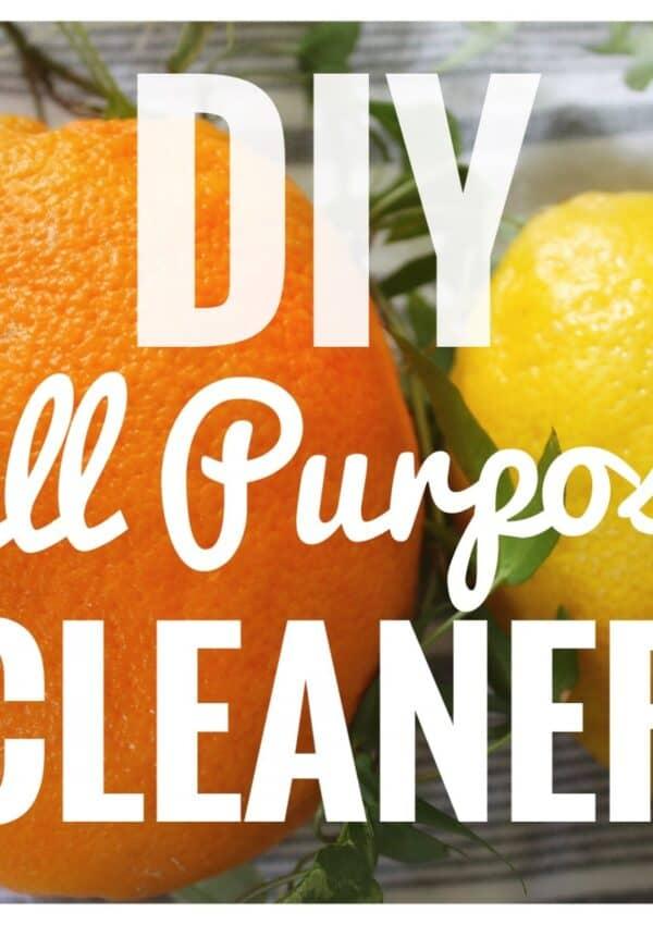 DIY |  All Purpose Cleaner