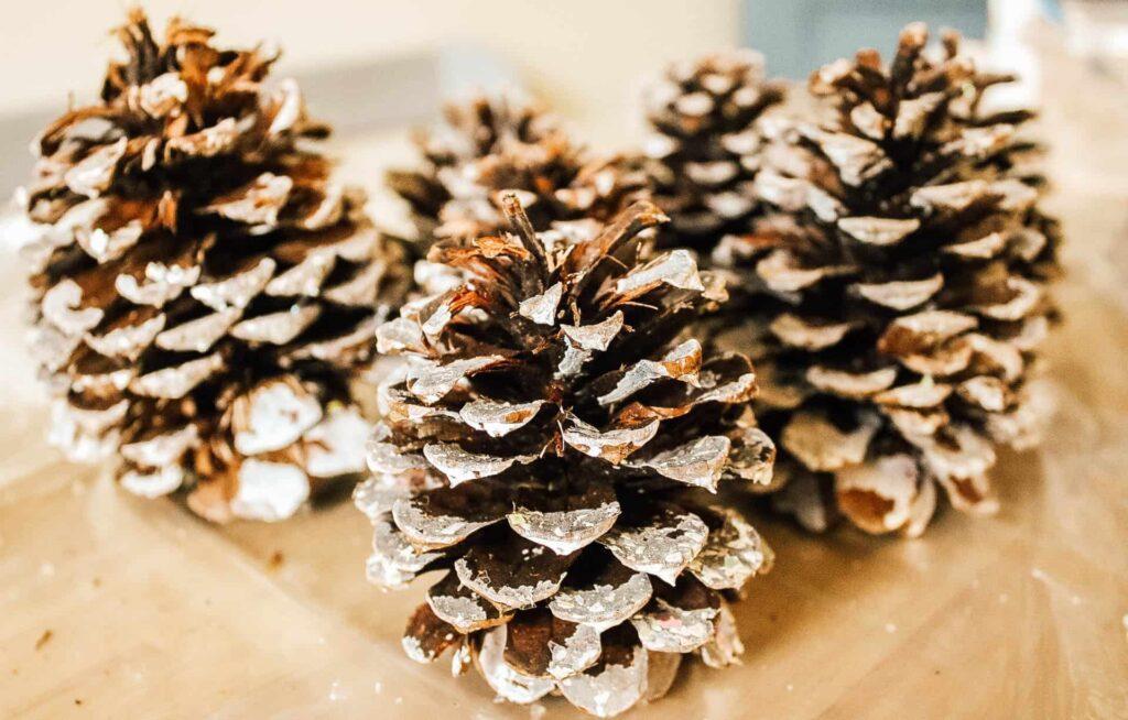 Sparkling Pine Cones