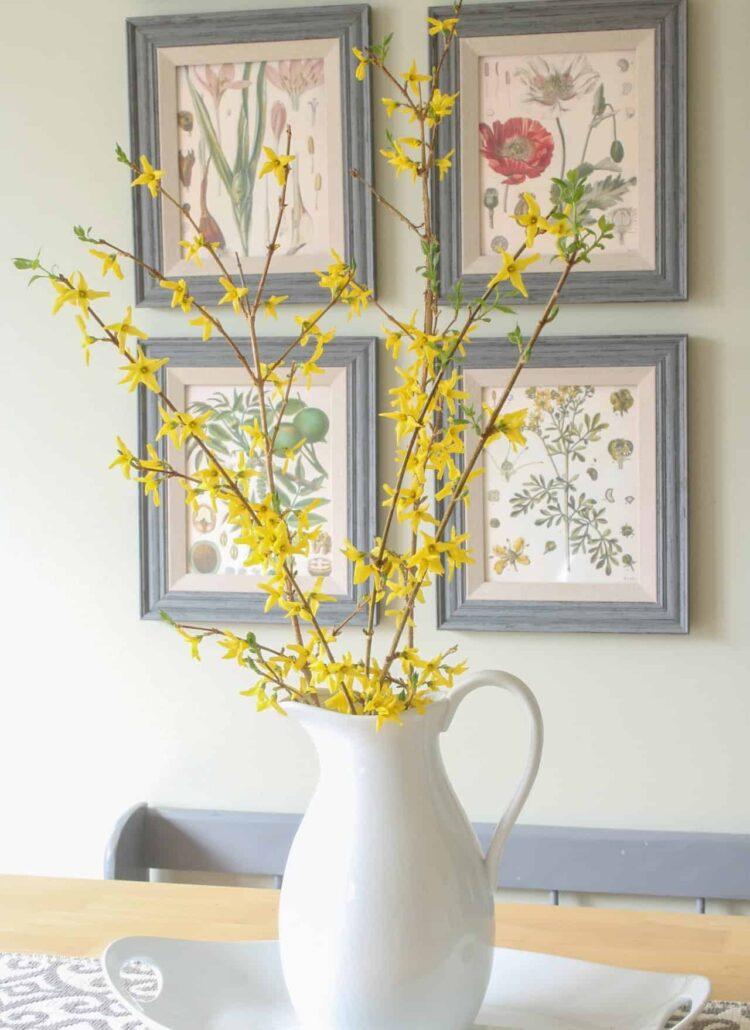 forsythia vase