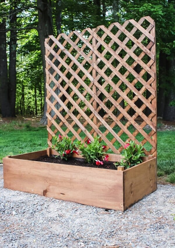 finished raised garden planter with trellis