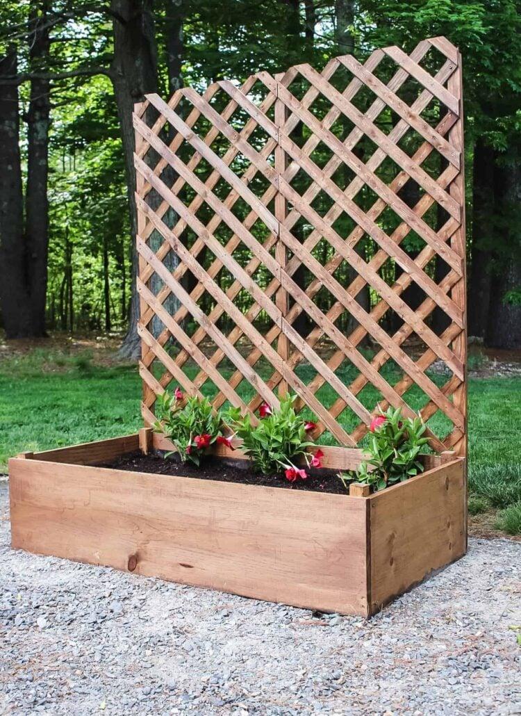 finished raised garden planter with trellis