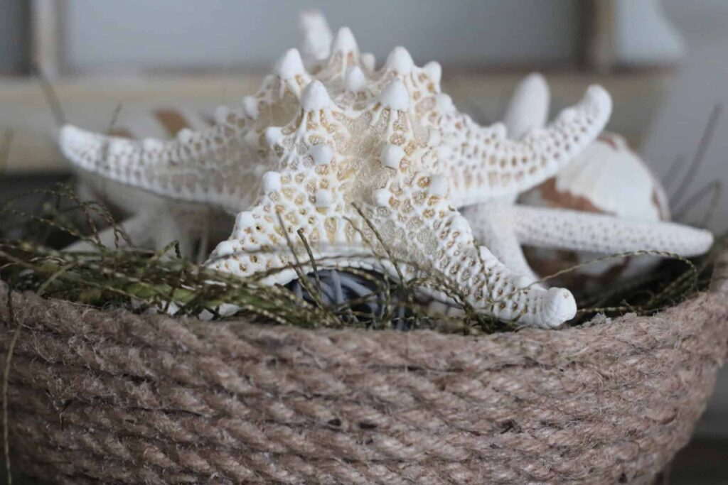 summer decorating ideas- rope bowl filled with shells