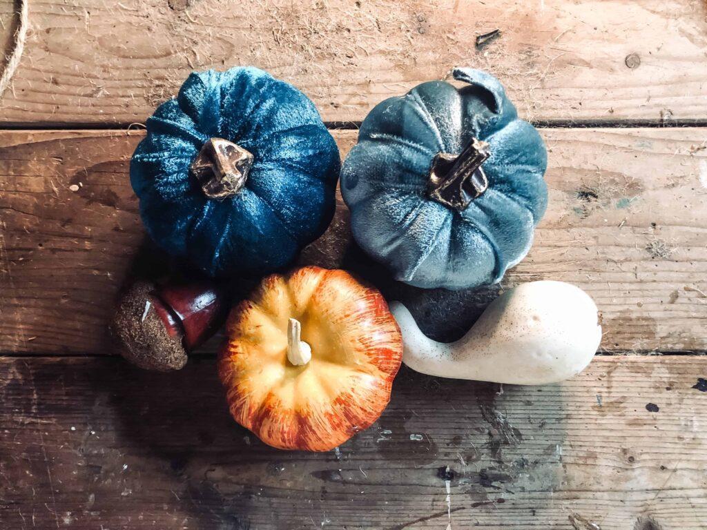 pumpkins and acorn