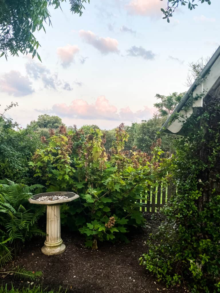 colorful sunset at Hillcrest Estate in June